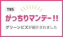 TBS「がっちりマンデー!!」